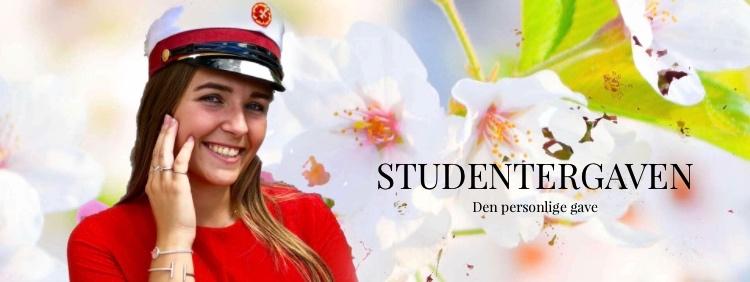 Studenter slider -Foto